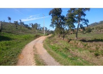 Thumbnail Land for sale in Cercal, Cercal, Santiago Do Cacém