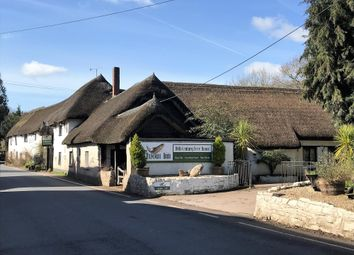 Thumbnail Pub/bar for sale in Substantial 16th Century Thatched Inn EX16, Bickleigh, Devon