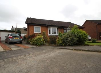 Thumbnail 2 bed bungalow to rent in Pegasus Avenue, Carluke