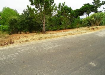 Thumbnail Land for sale in Carvalhal, Carvalhal, Bombarral