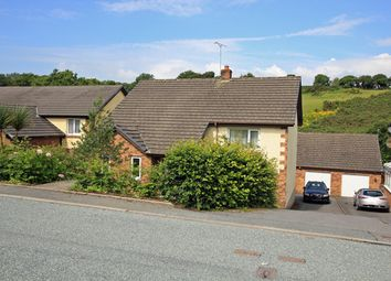 Thumbnail 4 bed detached house for sale in Llangynog, Carmarthen, Carmarthenshire