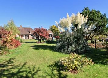 Thumbnail 2 bed semi-detached bungalow for sale in The Glebe, Prestwood, Great Missenden