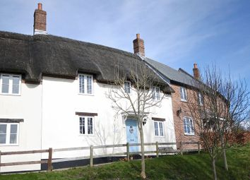 Thumbnail 3 bed cottage for sale in Tolpuddle, Dorchester