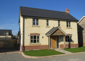 Thumbnail 3 bedroom detached house for sale in Coldwells Road, Holmer, Hereford