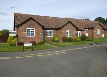 Thumbnail 2 bed bungalow for sale in Liphook, Hampshire, United Kingdom