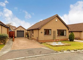Thumbnail 2 bedroom bungalow for sale in Dunnottar Place, Kirkcaldy, Fife, Scotland
