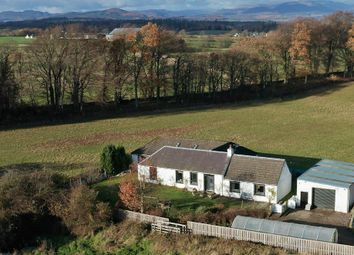 Thumbnail 6 bed detached house for sale in Lower Borland Park, Auchterarder, Perthshire