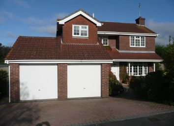 Thumbnail 4 bed detached house to rent in Mallow Close, Waterlooville