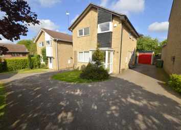 Thumbnail 4 bed detached house to rent in Lackford Close, Brundall, Norwich