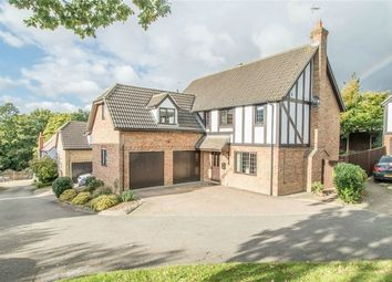 Thumbnail 5 bed detached house for sale in St. Peters View, Sible Hedingham, Halstead