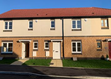 Thumbnail 3 bed terraced house for sale in Boxwood Road, Weymouth