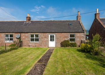 Thumbnail 2 bedroom semi-detached house to rent in Westerton Of Pitarrow, Laurencekirk, Aberdeenshire
