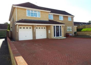 Thumbnail 4 bedroom detached house for sale in Shepton Beauchamp, Ilminster, Somerset