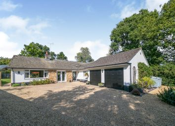 Chalk Road, Ifold, Billingshurst RH14. 3 bed detached bungalow