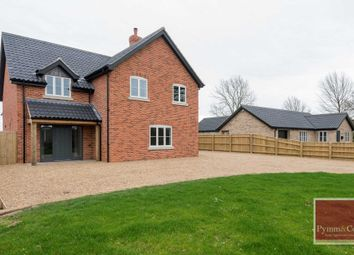 Thumbnail 4 bed detached house for sale in Seething Street, Norwich