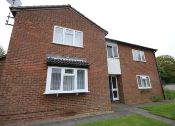 Thumbnail Studio for sale in Celandine Drive, Luton
