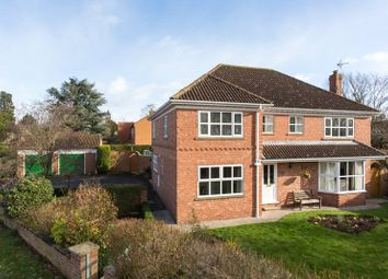 Thumbnail 4 bed detached house for sale in Back Lane, Wigginton, York, North Yorkshire