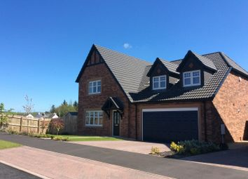 Thumbnail 4 bed detached house for sale in 4 Campion Drive, Summerpark, Dumfries