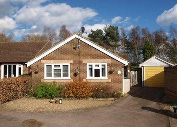 Thumbnail 2 bed bungalow for sale in Ward Road, Ipswich