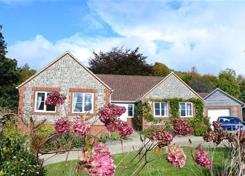 Thumbnail 3 bed bungalow for sale in The Willows, Chetcombe Road, Mere