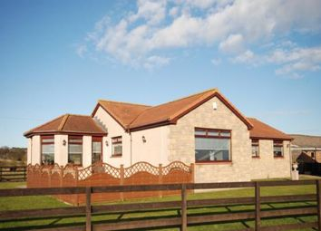 Thumbnail 4 bed detached bungalow for sale in Ovenstone Muir, By Anstruther