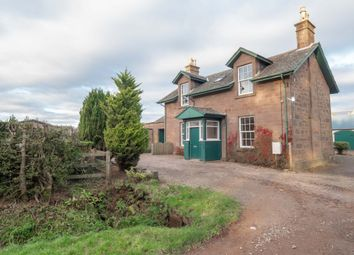 Thumbnail 4 bed semi-detached house to rent in Craigo, Montrose