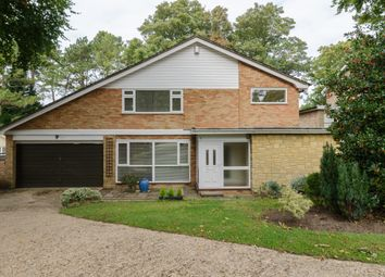 Thumbnail 4 bed detached house for sale in Woodhyrst Gardens, Kenley