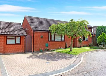 Thumbnail 4 bed detached bungalow for sale in Warren View, Loddon, Norwich, Norfolk