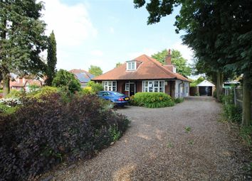 Thumbnail 4 bed bungalow for sale in Thunder Lane, Norwich