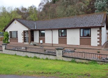 Thumbnail 4 bed detached bungalow for sale in Croft Lane, Inverness