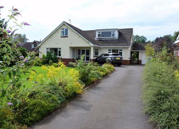 Thumbnail 4 bed detached bungalow to rent in Ewyas Harold, Hereford