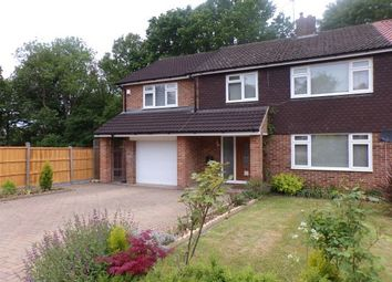 Thumbnail 5 bed property to rent in La Plata Grove, Brentwood