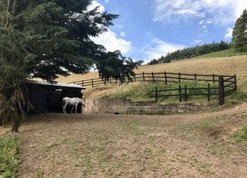 Thumbnail Equestrian property for sale in Paddock And Stables, Beacon Edge, Penrith