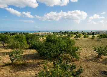 Thumbnail Land for sale in Lagoa (Algarve), Algarve, Portugal