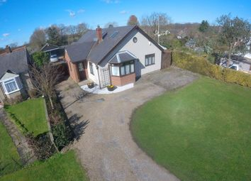 Thumbnail 4 bed detached bungalow for sale in Blind Lane, Halstead Road, Eight Ash Green, Colchester