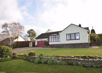 Thumbnail 3 bed detached bungalow for sale in Newhall Point, Balblair, Ross-Shire