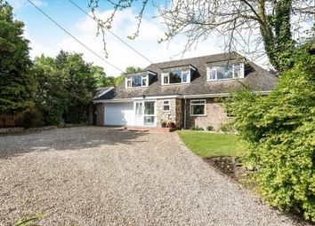 Thumbnail 5 bed bungalow for sale in Costessey, Norwich, Norfolk