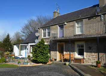 Thumbnail 2 bed flat for sale in St. Serfs Terrace, Dunning, Perth