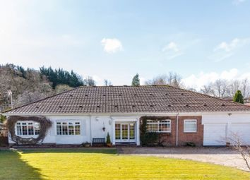 Thumbnail 4 bed detached bungalow for sale in 6 Forrestfield Crescent, Newton Mearns