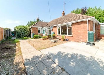 3 bed bungalow for sale in Serpentine Walk, Colchester CO1