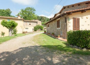 Thumbnail Farm for sale in 21047 Chianti Agriturismo, Figline E Incisa Valdarno, Florence, Tuscany, Italy