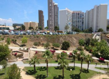 Thumbnail 3 bed apartment for sale in Avenida L Aigüera, Benidorm, Spain