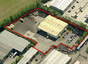 Thumbnail Industrial for sale in Springtown Avenue, Londonderry, County Londonderry