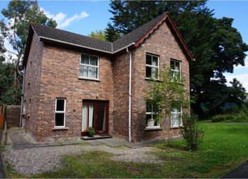 Thumbnail 4 bed detached house for sale in Rathdune Grove, Downpatrick