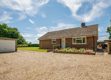 Thumbnail 3 bedroom detached bungalow for sale in The Green, Weston Colville, Cambridge