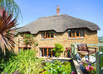 Thumbnail 4 bed detached house for sale in Chideock, Bridport