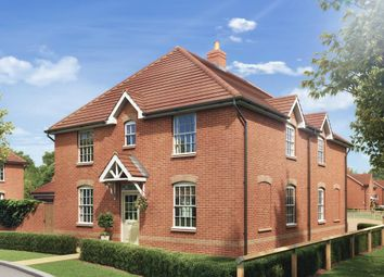 "Thumbnail 3 bed semi-detached house for sale in ""Hadley"" at Ashford Road, Faversham"