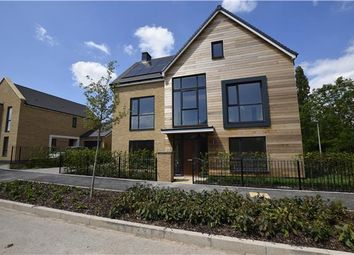 Thumbnail 5 bedroom detached house for sale in Plot 139 The Olive, Locking Parklands, Weston-Super-Mare