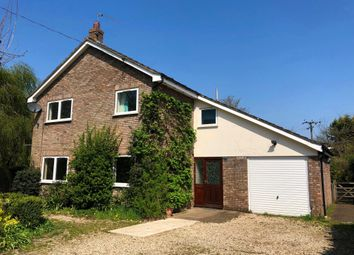 Thumbnail Detached house to rent in Fen Street, Old Buckenham, Attleborough