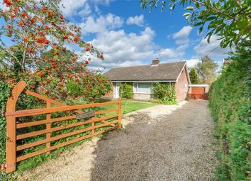 Thumbnail 3 bed detached bungalow for sale in Dereham Road, Beeston, King's Lynn